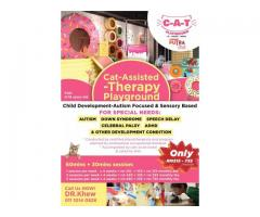 C-A-T Playground Sensory Integration Therapy Class