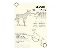 Mashutherapy for children with autism
