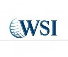 WSI | Innovative & Cost-Effective Digital Marketing Agency