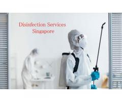 Best Disinfection Services Singapore