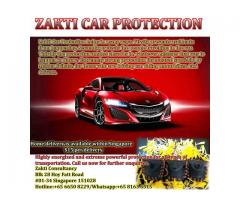 Signature Vehicle Protection Amulet Zaki