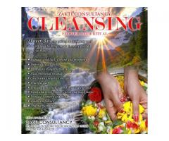 Excellent Cleansing by Zakti