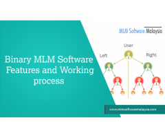 Binary MLM Software Features And Working process-MLM Software Malaysia