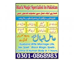 Amil Baba in Pakistan Amil Nihal Shah 03010868983