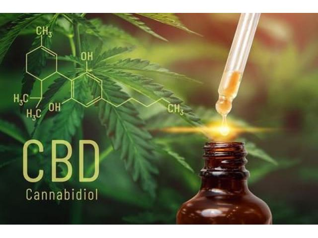 Test >> https://publons.com/researcher/4122944/green-healingcbd/